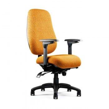 Neutral Posture Chair (NPS6500)