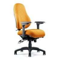 Neutral Posture Chair (NPS8500)